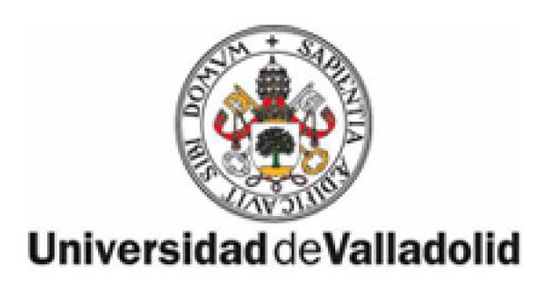 ayuntamiento_valladolid